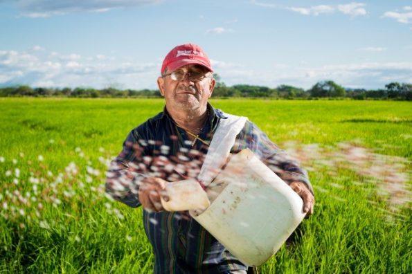 agricultural entrepreneurs